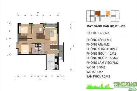 Thiết kế căn hộ C1 và C2