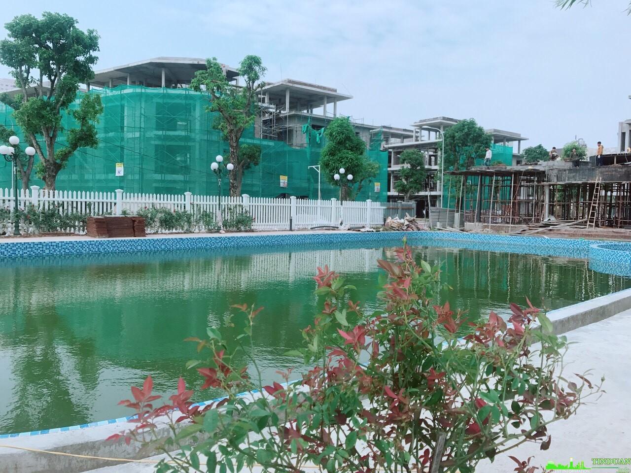 Bể bơi dự án The Eden Rose Biệt thự hoa hồng