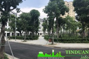 Khuôn viên cây xanh dự án Belleville B4 Nam Trung Yên