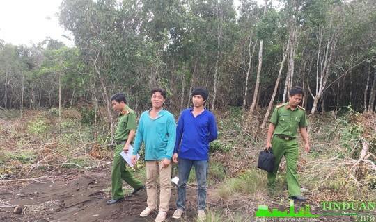 Đối tượng phá rừng Phú Quốc